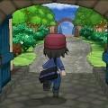 Pokémon X y Pokémon Y 14-06-13 002