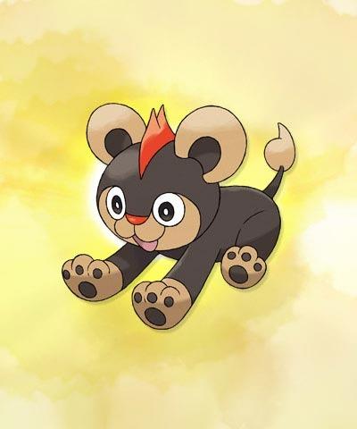 Pokémon X y Pokémon Y 14-06-13 036