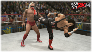 WWE-2K14-REVIEW-004