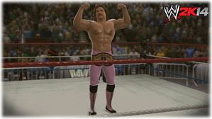 WWE-2K14-REVIEW-005