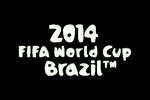 2014 FIFA World Cup Brazil  Logo black