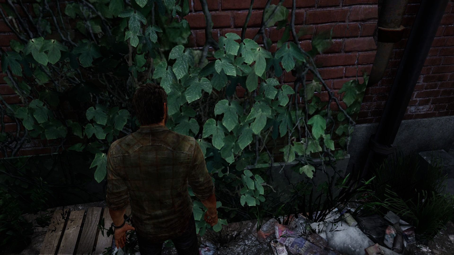 The Last of Us Remastered 20-07-14 039