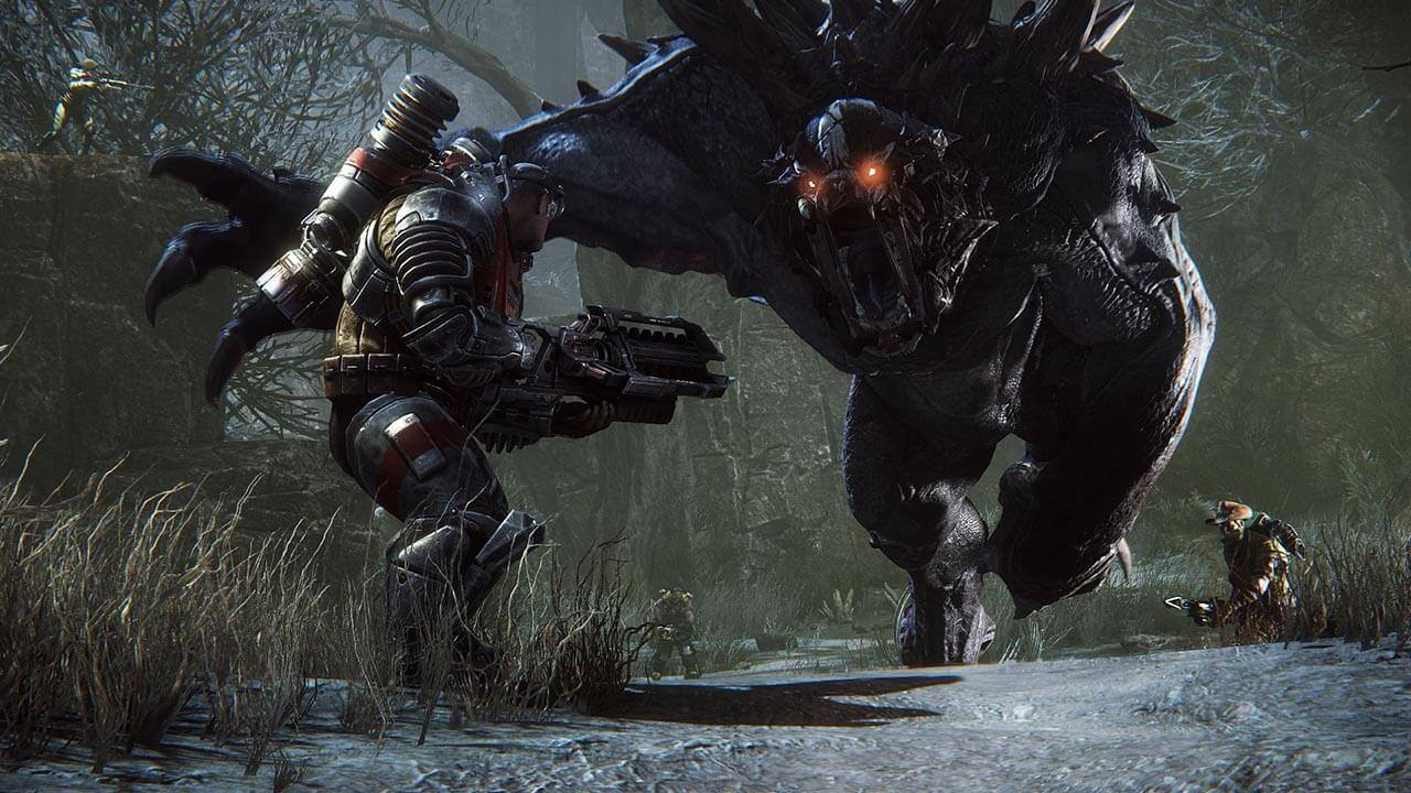 Evolve-REVIEW-001