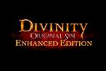 Divinity Original Sin Enhanced Edition Logo black