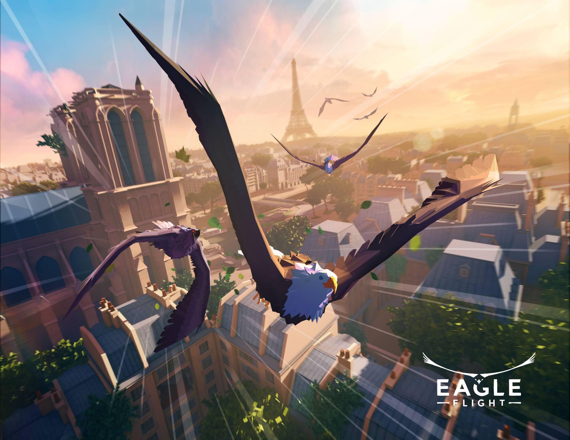 Eagle-Flight_2016_06-13-16_006